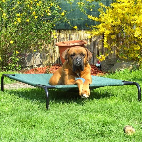 hundeliege hundebett f r gro e mittlere hunde 2 gr en. Black Bedroom Furniture Sets. Home Design Ideas